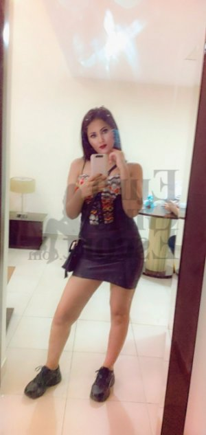 Anne-carine escort girl in South Riding